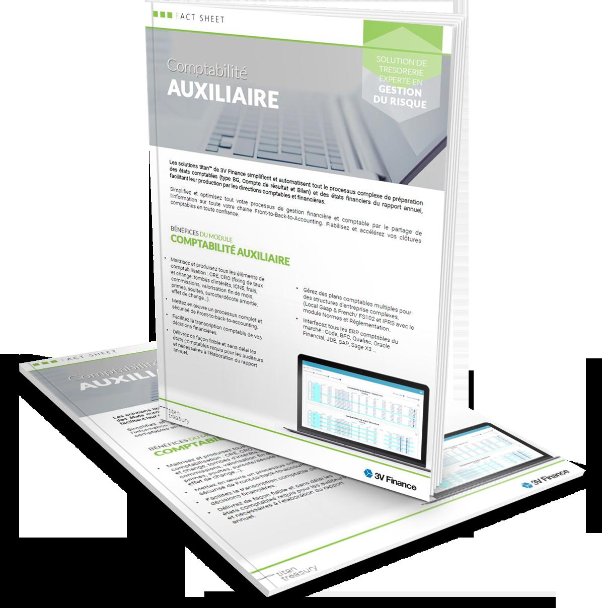3V Finance-fact sheets-Comptabilité Auxiliaire.png