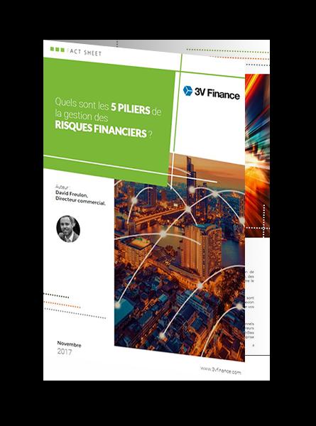 LB 1 - Les 5 piliers de la gestion des risques avec titan treasury.png